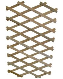 Apollo Expanding Wooden Trellis with Flexible Plant Support