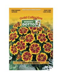 Dwarf Marigold (Tagetes Patula) - Gold Seeds By Sementi Dotto 1.4gr