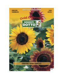 Dwarf Sunflower (Helianthus Annuus) - Gold Seeds By Sementi Dotto 2.8gr