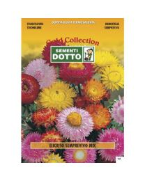 Strawflower (Helichrysum Bracteatum) - Gold Seeds By Sementi Dotto 1.3gr